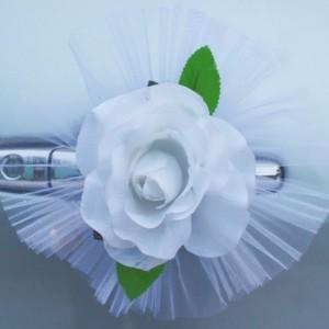 белая роза1-3