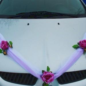 Лиловые розы на капот машины 43