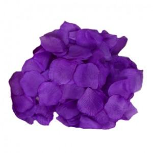 фиолетовые лепестки роз