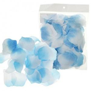 Бело-голубые лепестки роз